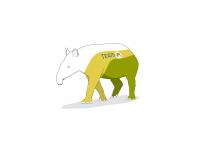 Tapir (Team-PI) -